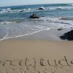Gratitude part 2
