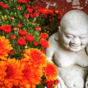buddha16